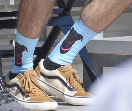 dog socks 2